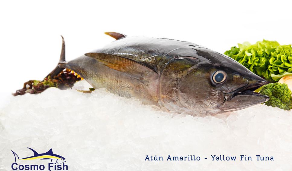 Atún Amarillo