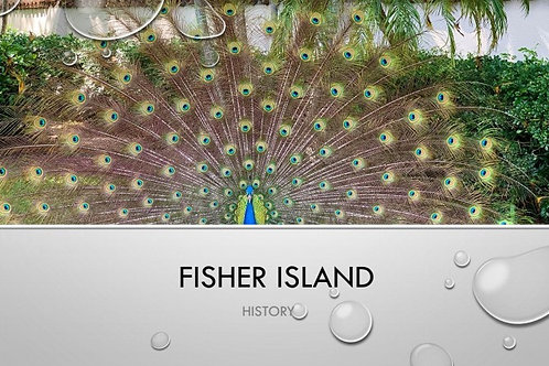 History of Fisher Island