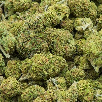 cannabis-social.2e16d0ba.fill-1200x1200.