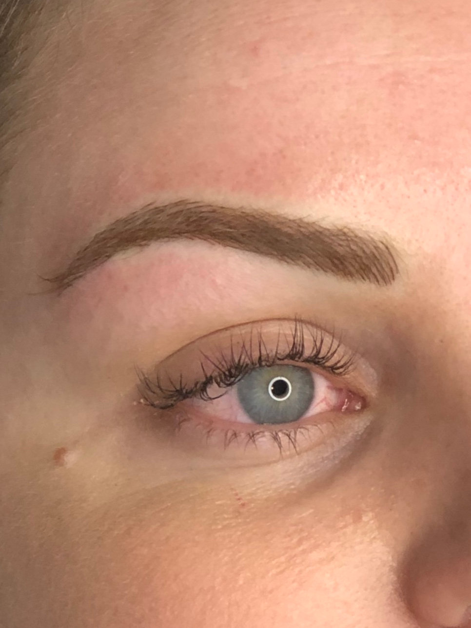 6-8 week Touch Up