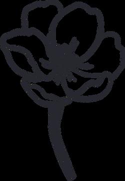 floral-20.png