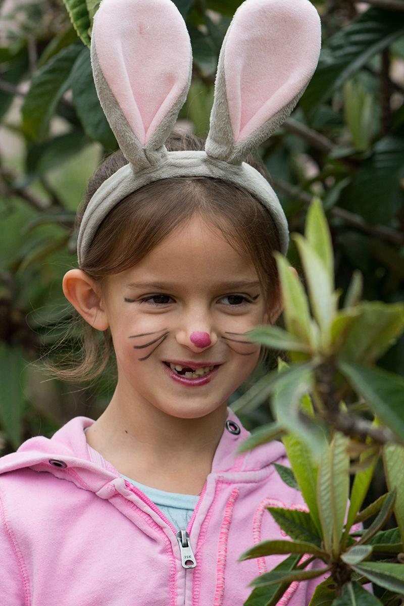 לארנבת אזניים ארוכות