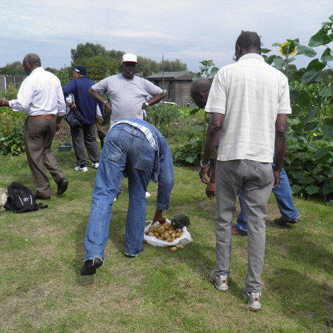 Harvest time,OPAM members after harvesting.