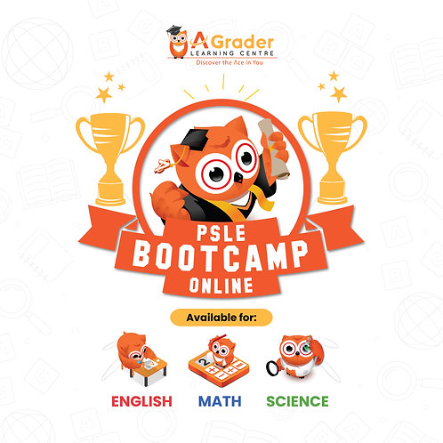 PSLE Bootcamp Payment