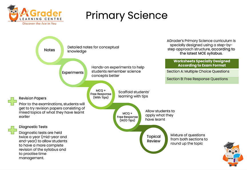 Primary Science structure | Primary Science Tuition Centre
