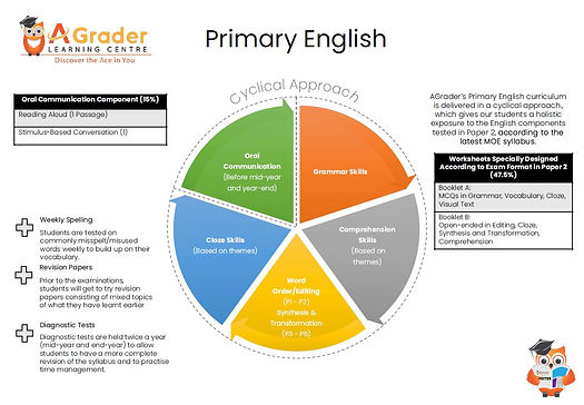 Primary Eng structure   Primary English tuition centre