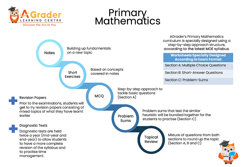 Primary Mathematics structure.png