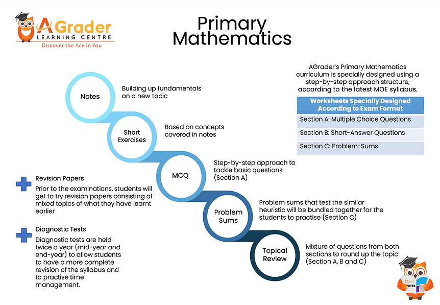 Primary Math structure | Primary Math tuition centre Singapore