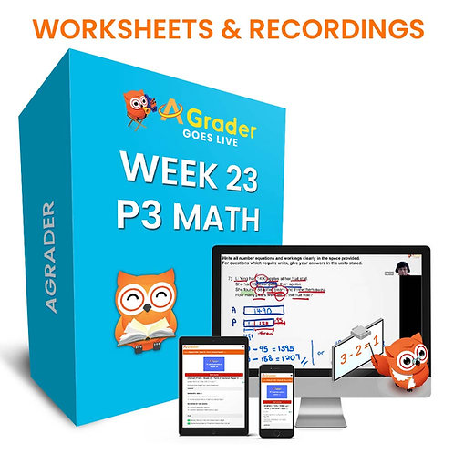 P3 Math (Week 23) - Term 2 Revision Paper 4