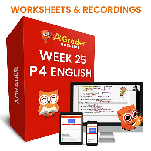 P4 English (Week 25) - Term 2 Revision Paper 4