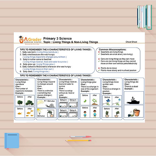 P3 Science Cheat Sheet - Living and Non-Living Things
