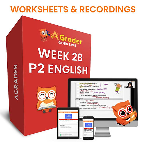 P2 English (Week 28) - Component: Editing and Punctuation & Word Order