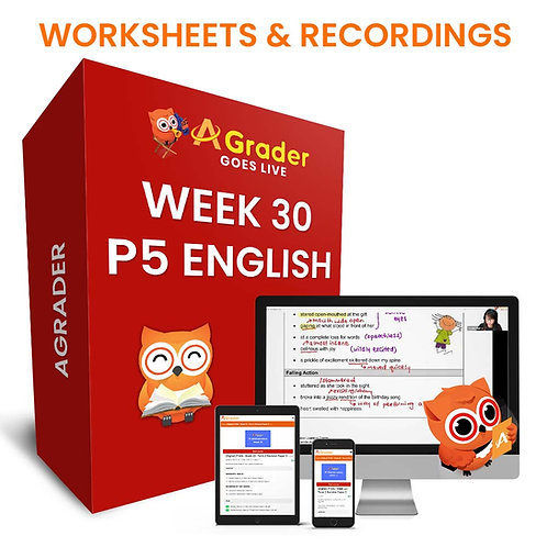 P5 English (Week 30) - Component: Comprehension Open ended