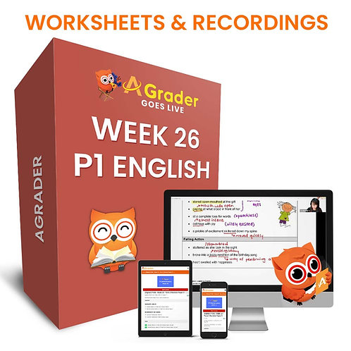 P1 English (Week 26) Comprehension Open Ended (Animals)