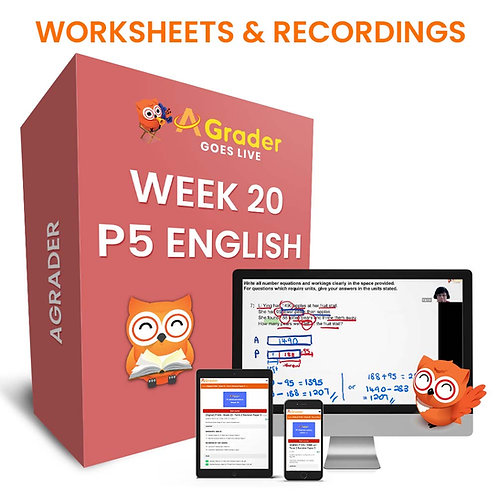 P5 English (Week 20) - Term 2 Diagnostic Test (Revision Paper 1)