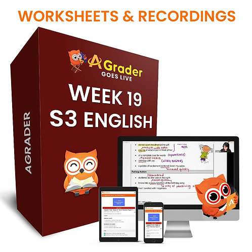 S3 English (Week 19) - Component: Editing