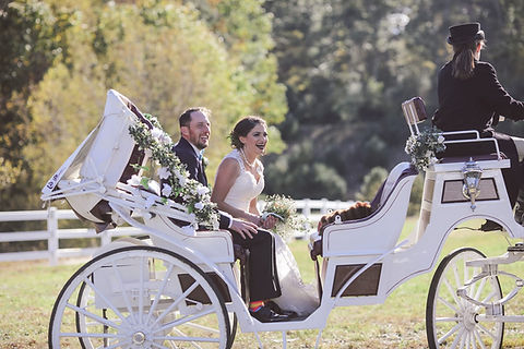 tim and ariel in carriage.jpg
