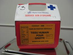Organ transfer carry case