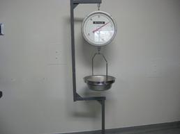 Morgue scale
