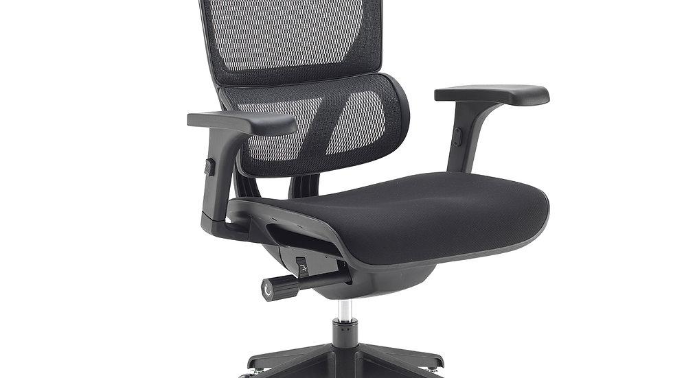 Dynamic mesh back posture chair - white & Black frame options