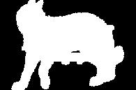 Logo PNG Blanc BD.png