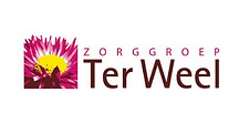 ter-weel-logo.png
