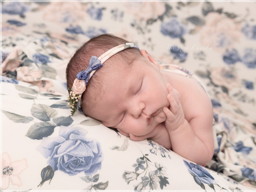 Newborn Child Portrait Photography Hull