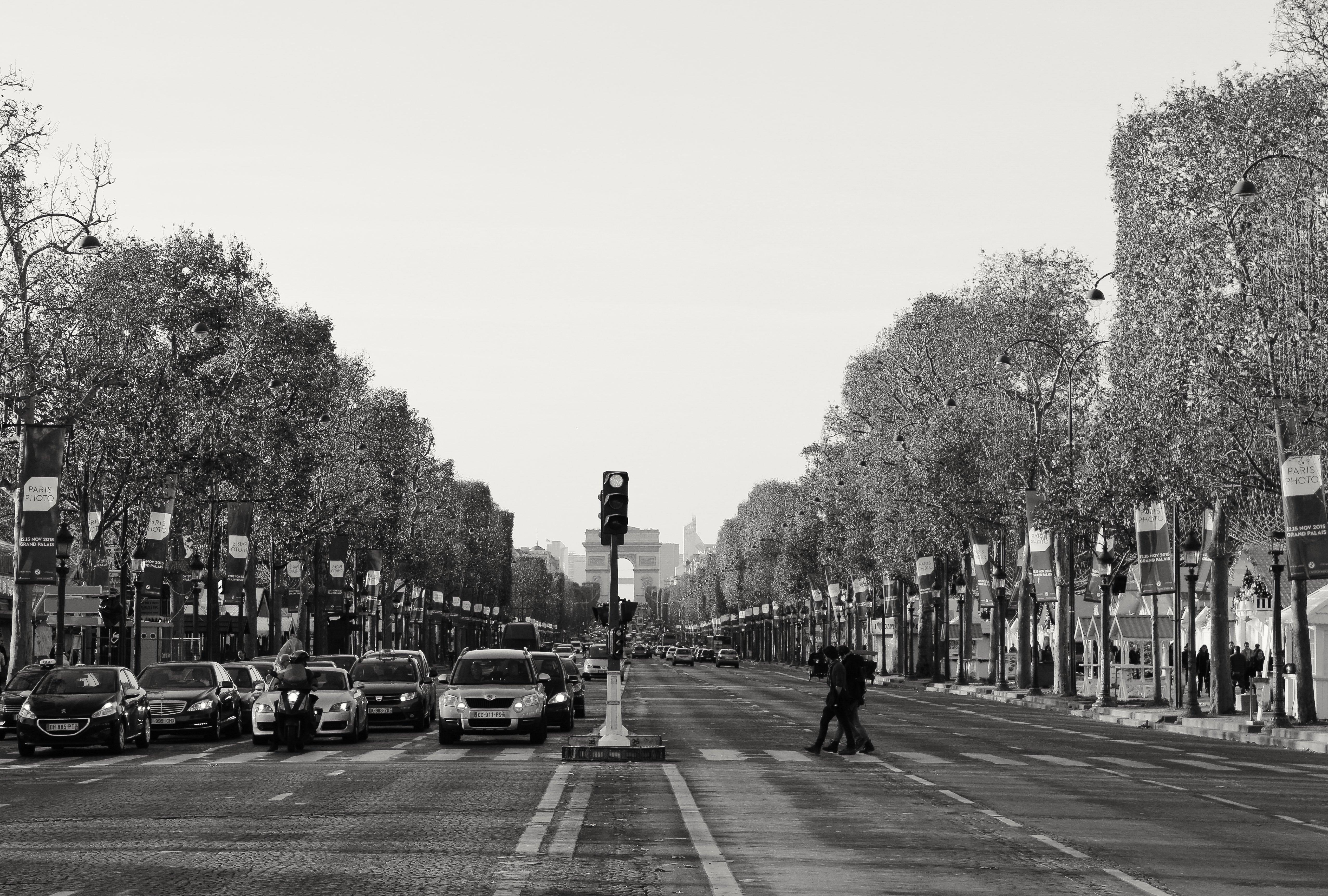 avenue des champs-elysees - 2015