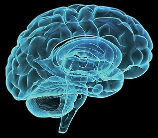 Brain Neon.jpg