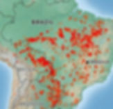 Brazil rainforest fires burning.jpg