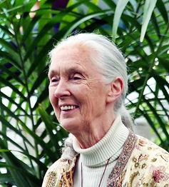 Jane_Goodall_GM.jpg