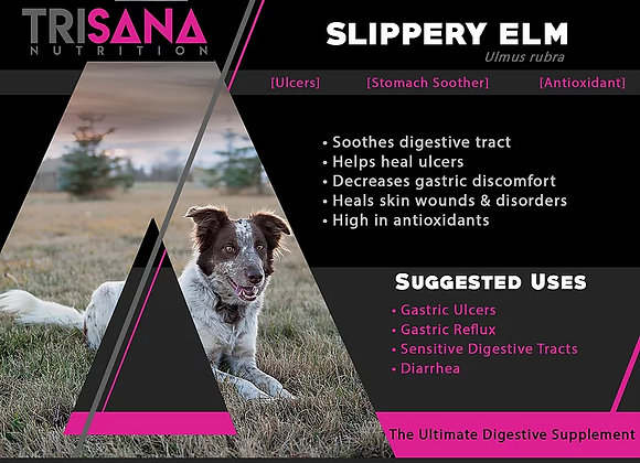 Canine Slippery Elm Bark
