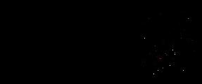 新ロゴ_黒_®️有.png