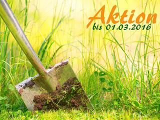 *AKTION*: Jetzt kostenloses Pflanzkonzept & Bepflanzung vom Profi im Zuge für Ihre Gartengestalt