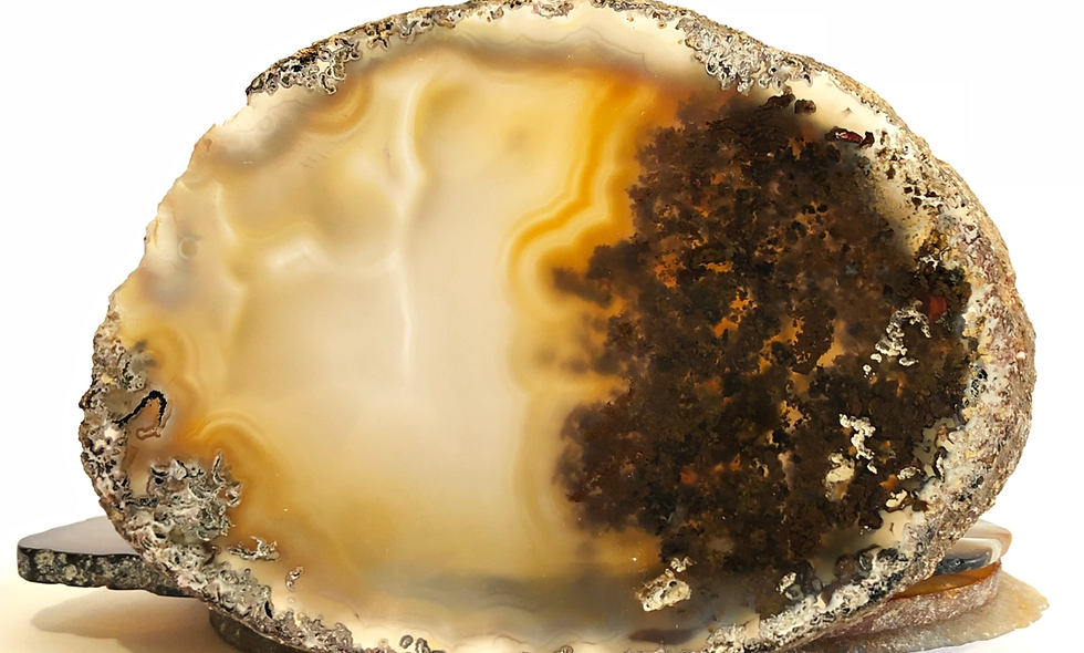 Crystal Agate Slice Dendritic