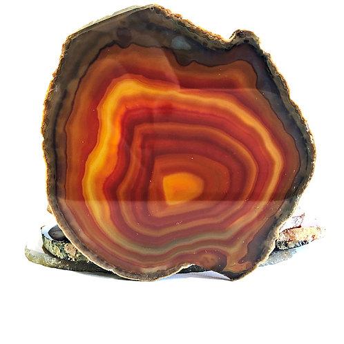 Maple Banded Agate Slice