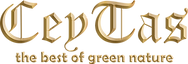 Logo TEXT new_GOLD_Embose.png