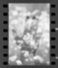 2020-05-10 F3 lady grey__0151.jpg
