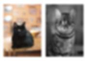 8 Maternity.jpg