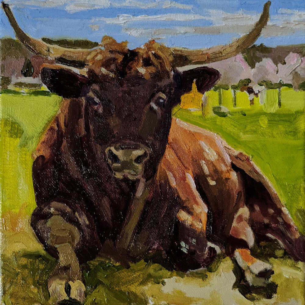 Endangered Pineywoods Cattle Bull painting - Rocky