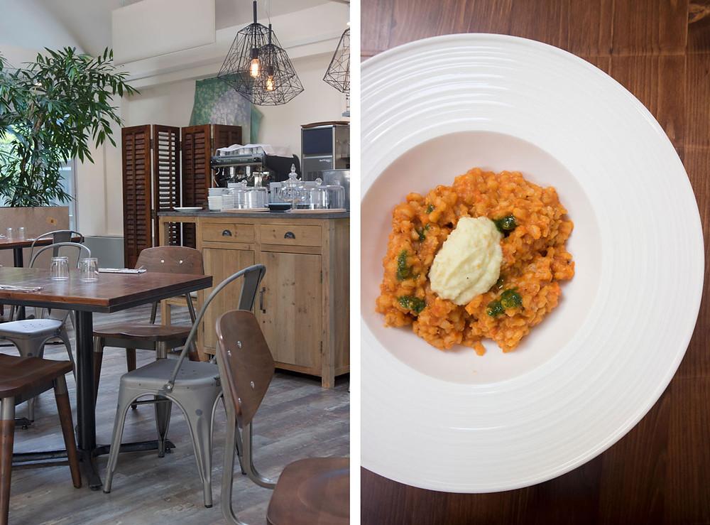 Vegetarian+ vegan restaurant in Padua | Vegetariamoci