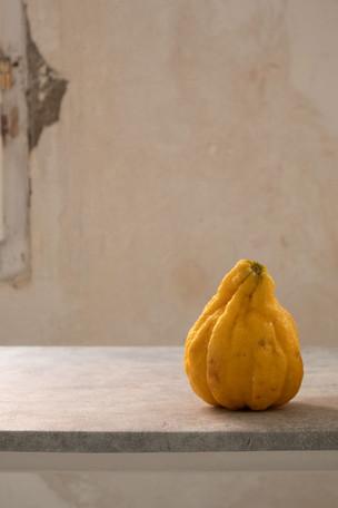 Spanish Citrus