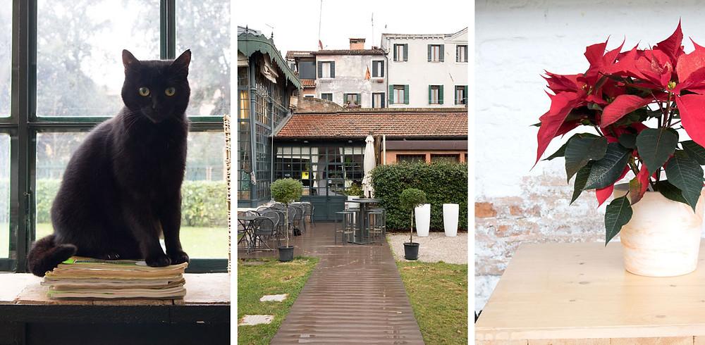Budget eats | Caffè la serra | Venice - Italy