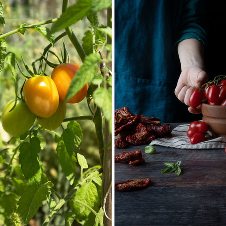 A visit to an island and two recipes with tomatoes