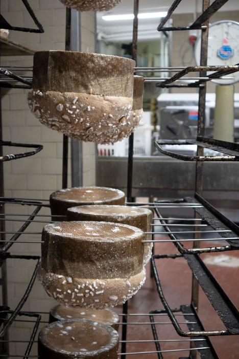 Focaccia by Emilio Colussi (Artisan Bake
