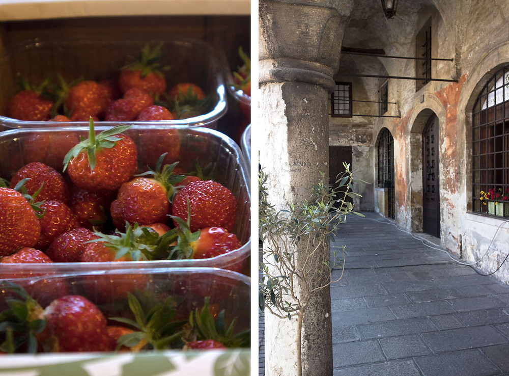 Food Shopping in Treviso | Day trip from Venice