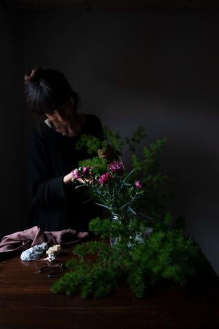 Border Carnations