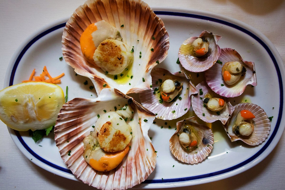 Queen scallops | Trattoria da Bepi | Traditional Venetian food