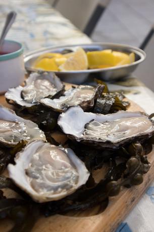 oysters - Dublin