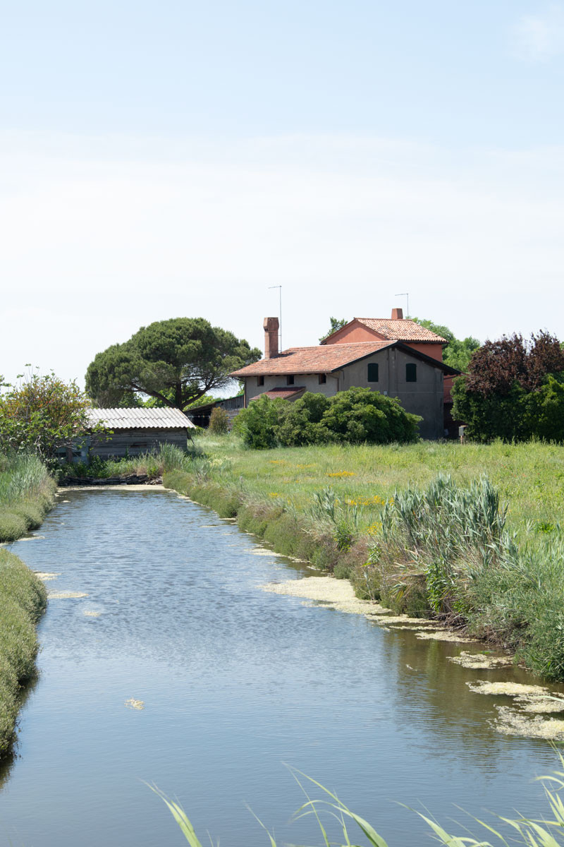 Farms in Venice Italy | Sant'Erasmo